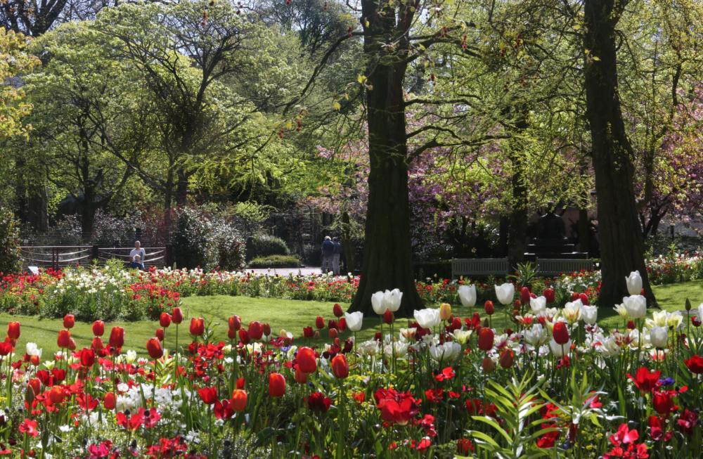 ARTIS voorjaar. Foto ARTIS, Ronald van Weeren